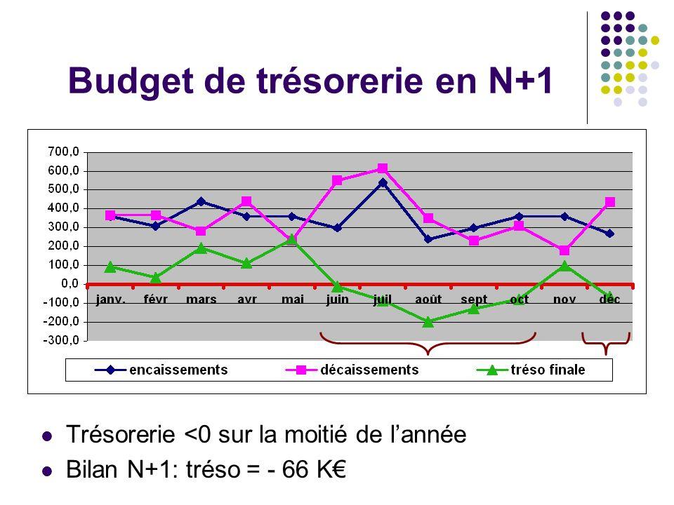 Budget de trésorerie en N+1