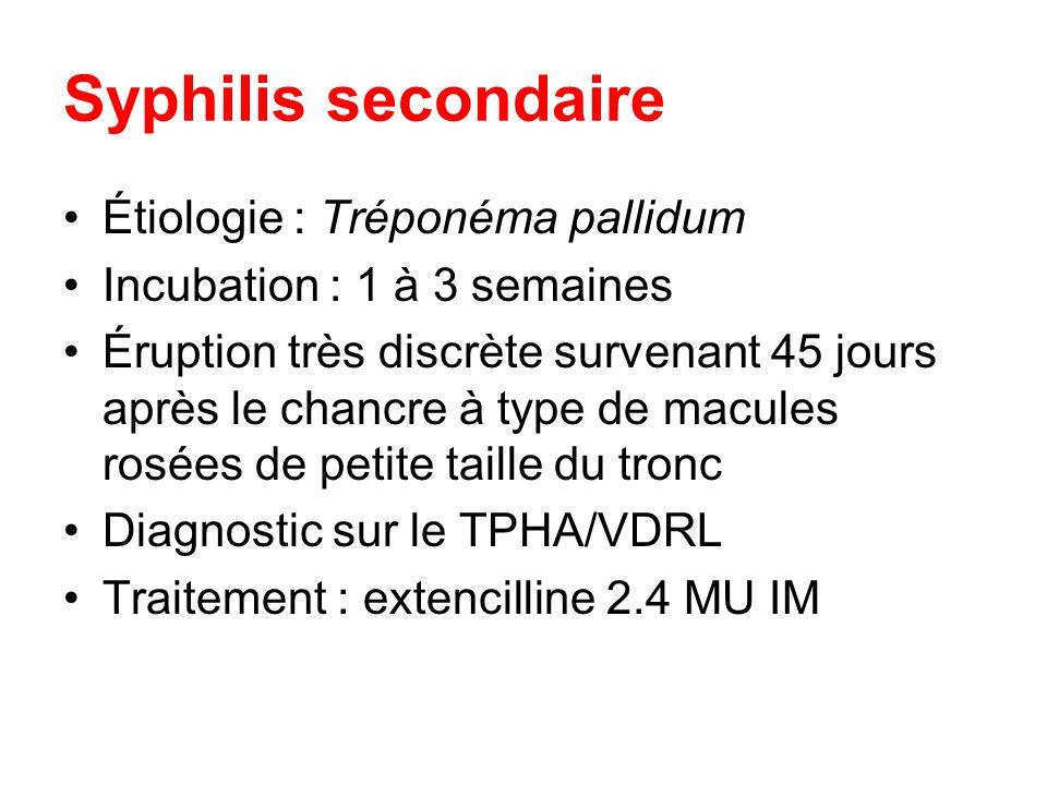 Syphilis secondaire Étiologie : Tréponéma pallidum