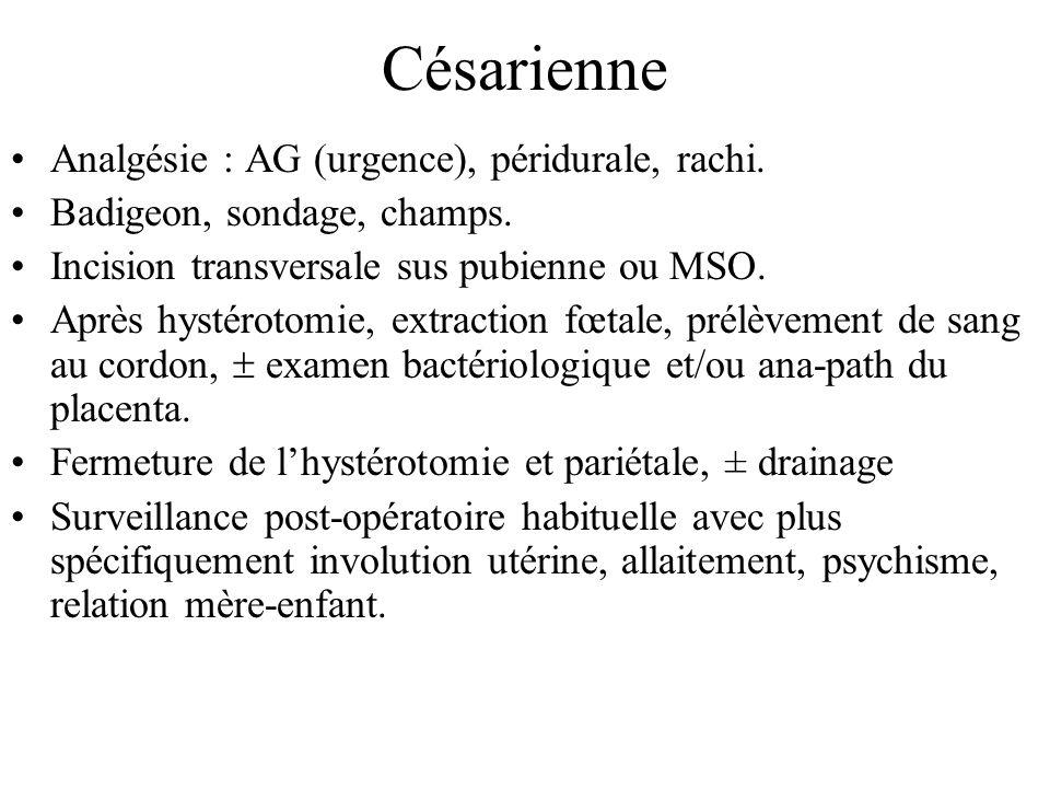 Césarienne Analgésie : AG (urgence), péridurale, rachi.
