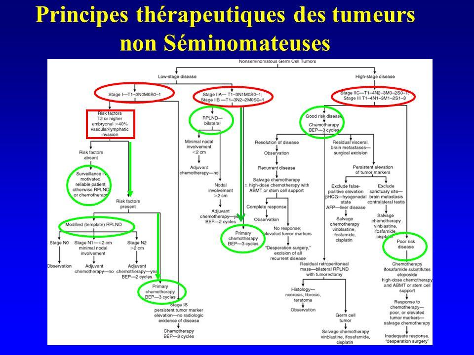 Principes thérapeutiques des tumeurs non Séminomateuses