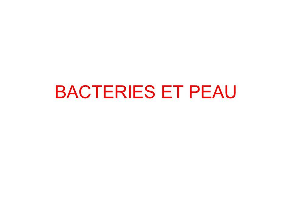 BACTERIES ET PEAU