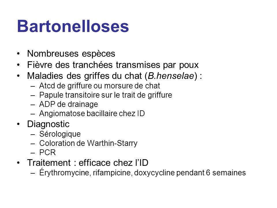 Bartonelloses Nombreuses espèces