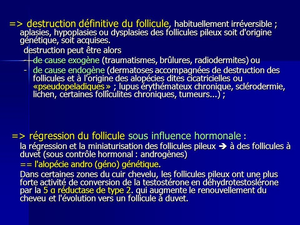 => destruction définitive du follicule, habituellement irréversible ; aplasies, hypoplasies ou dysplasies des follicules pileux soit d origine génétique, soit acquises.