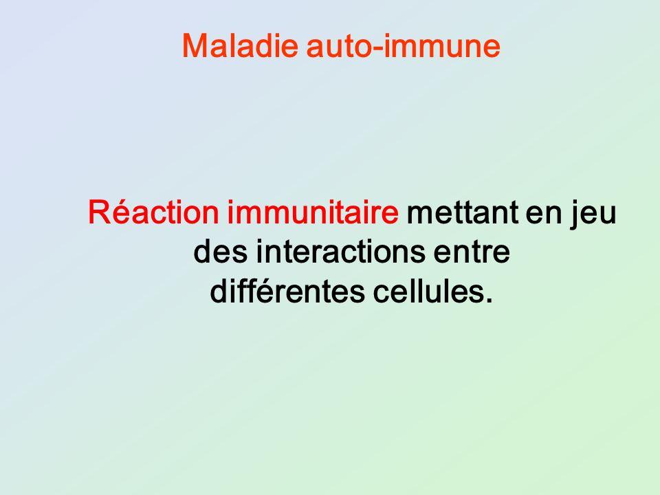 Réaction immunitaire mettant en jeu des interactions entre