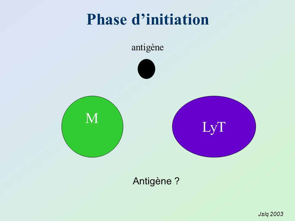 Phase d'initiation antigène M LyT Antigène Jslq 2003