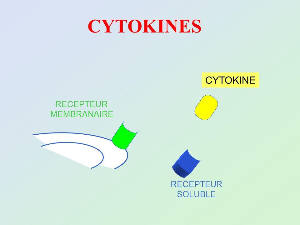 CYTOKINES CYTOKINE RECEPTEUR MEMBRANAIRE RECEPTEUR SOLUBLE