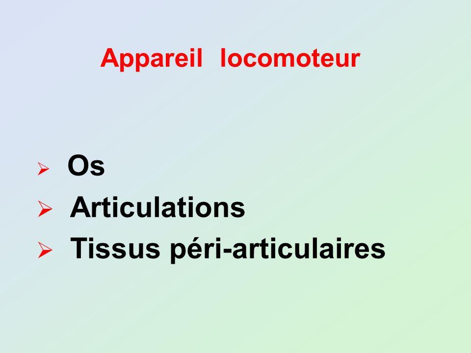 Os Articulations Tissus péri-articulaires