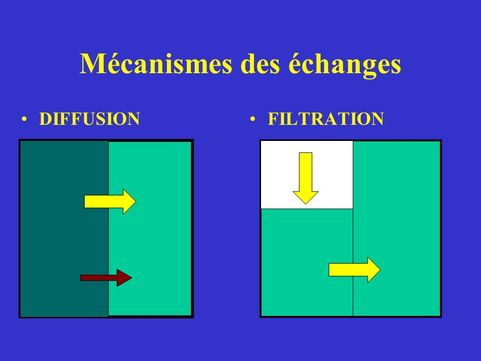 Mécanismes des échanges
