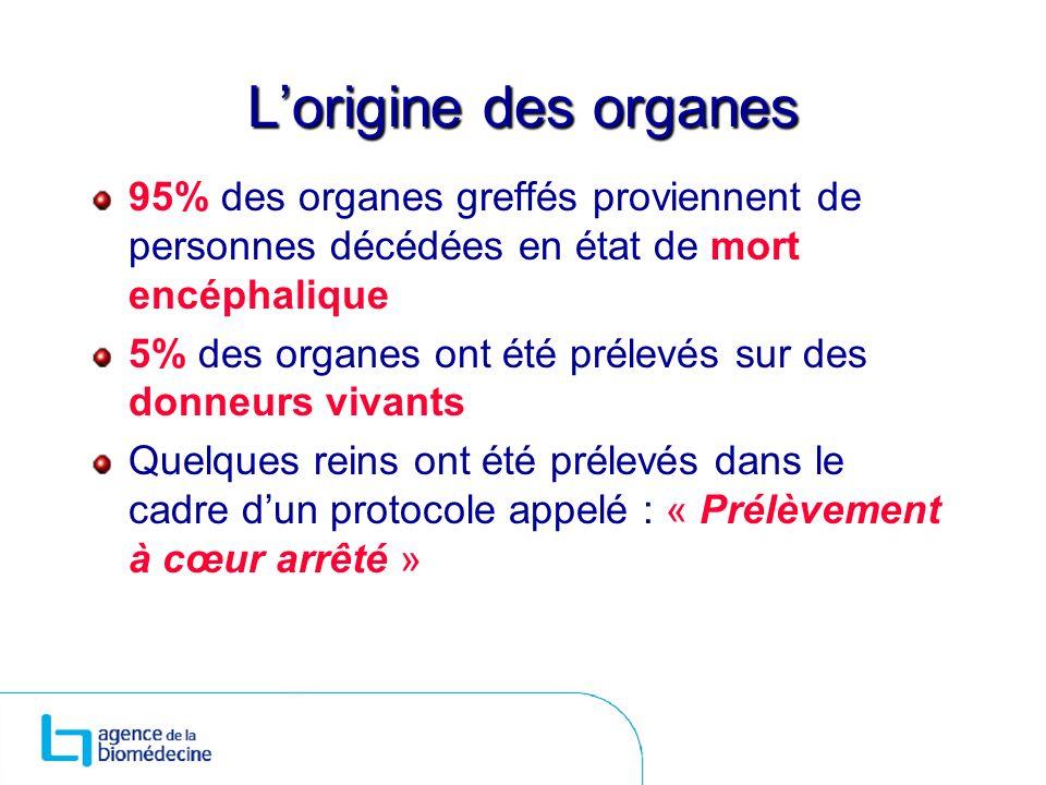 L'origine des organes 95% des organes greffés proviennent de personnes décédées en état de mort encéphalique.