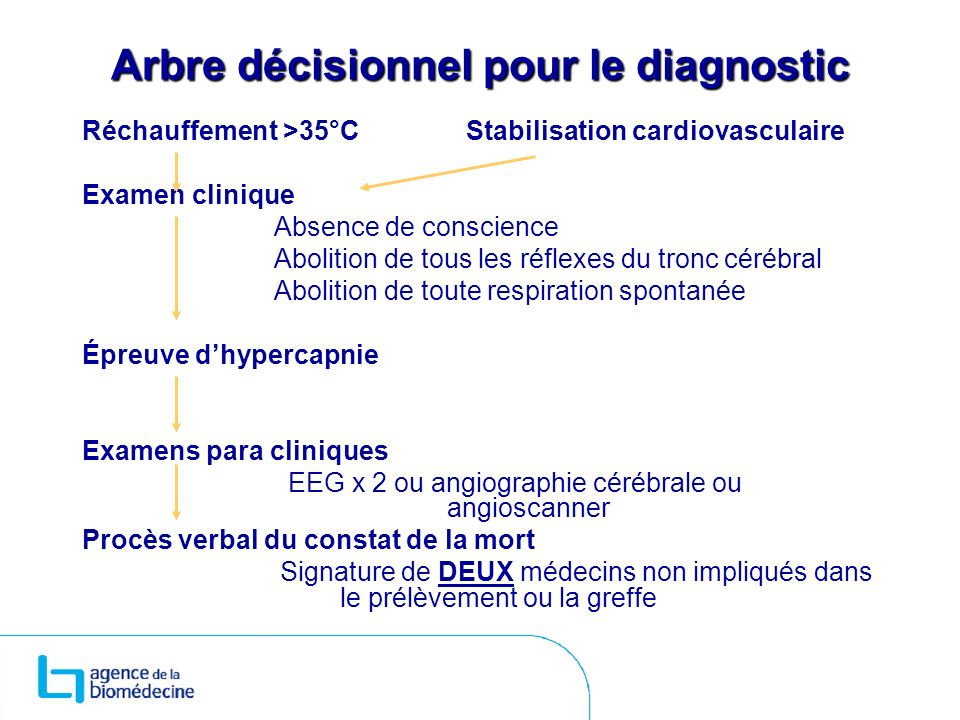 Arbre décisionnel pour le diagnostic