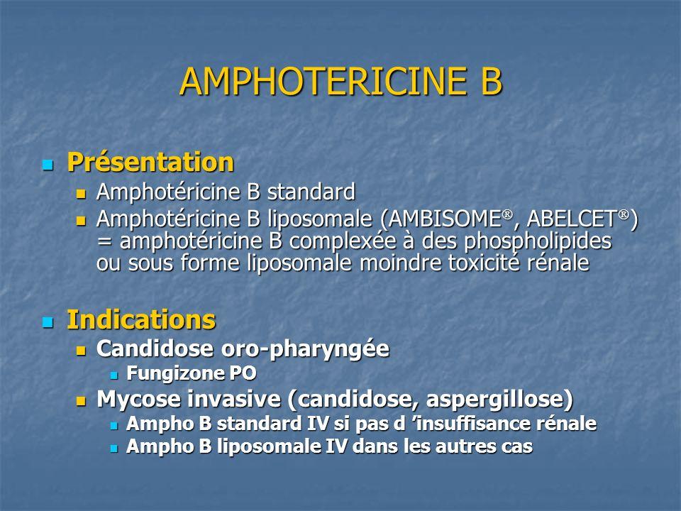 AMPHOTERICINE B Présentation Indications Amphotéricine B standard