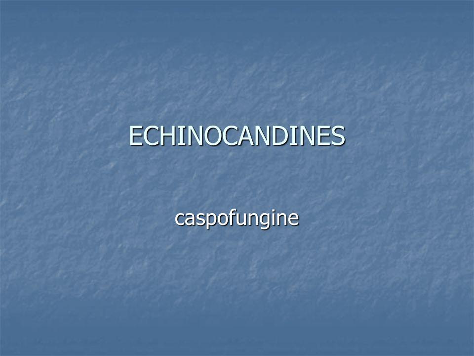 ECHINOCANDINES caspofungine