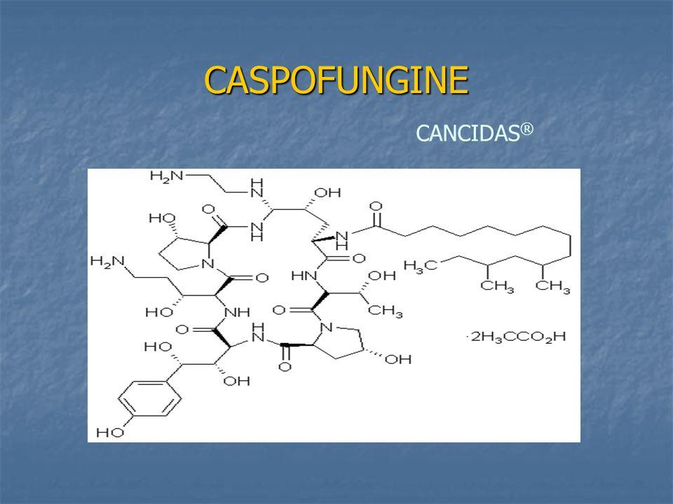 CASPOFUNGINE CANCIDAS®
