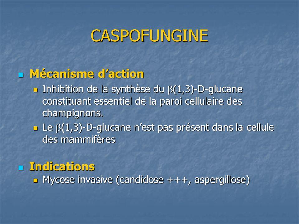 CASPOFUNGINE Mécanisme d'action Indications