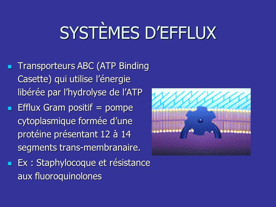 SYSTÈMES D'EFFLUX Transporteurs ABC (ATP Binding Casette) qui utilise l'énergie libérée par l'hydrolyse de l'ATP.