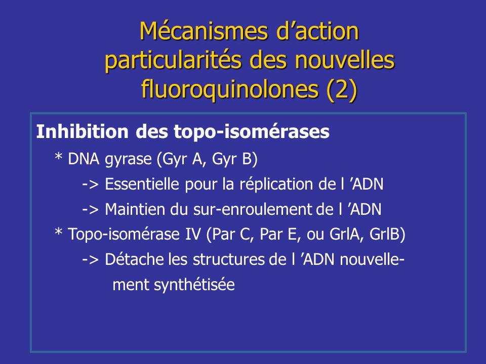 Mécanismes d'action particularités des nouvelles fluoroquinolones (2)