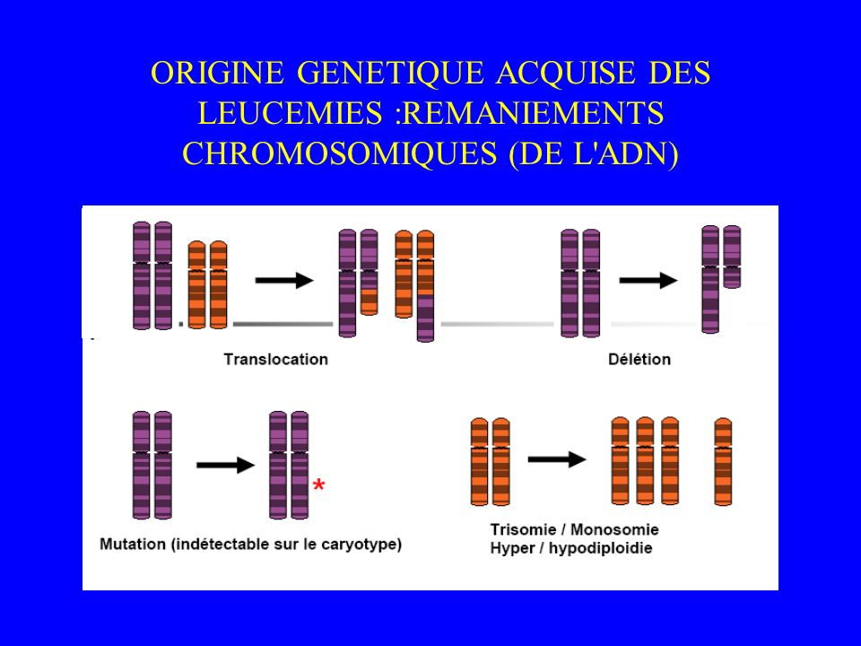 ORIGINE GENETIQUE ACQUISE DES LEUCEMIES :REMANIEMENTS CHROMOSOMIQUES (DE L ADN)