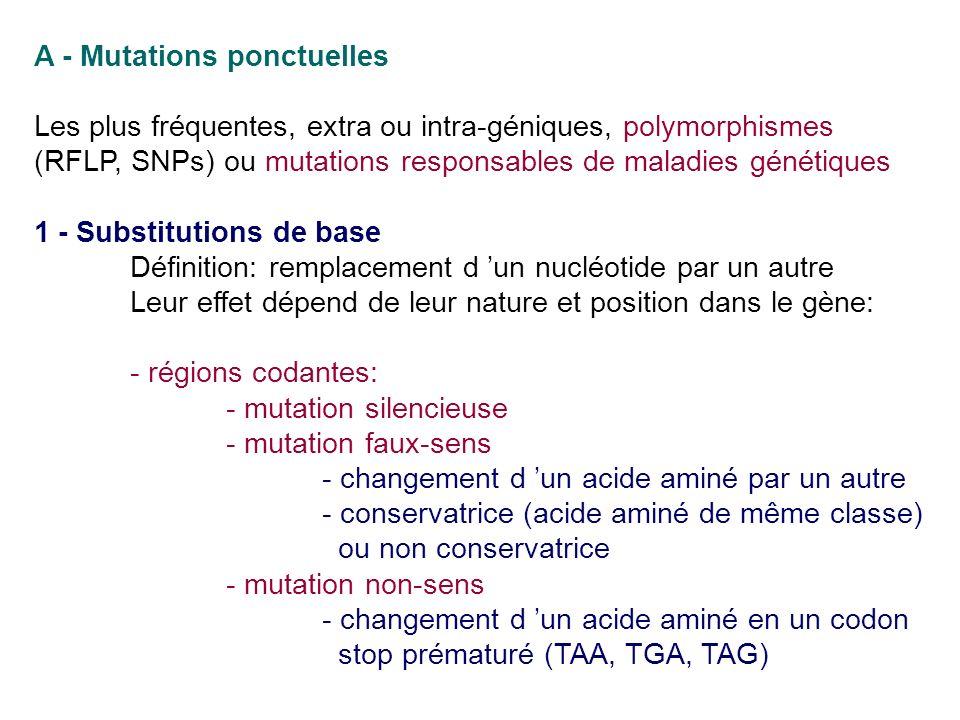 A - Mutations ponctuelles