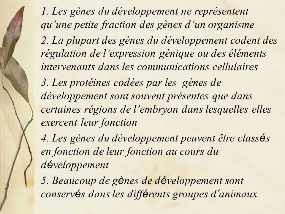 1. Les gènes du développement ne représentent qu'une petite fraction des gènes d'un organisme