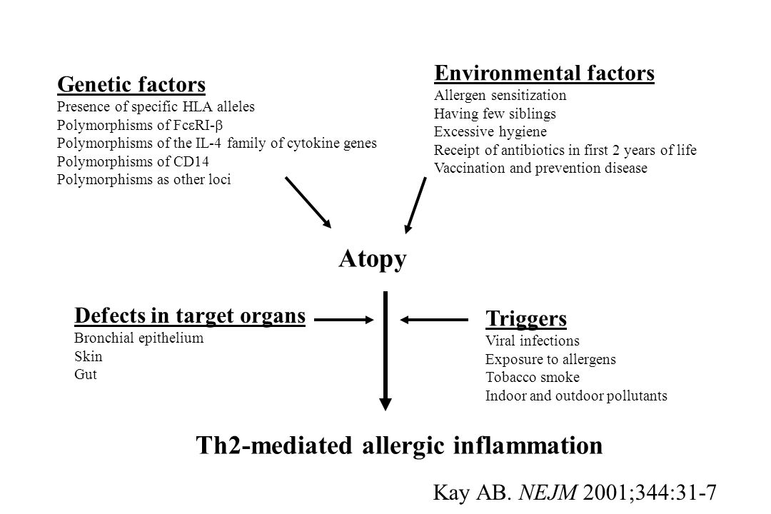 Th2-mediated allergic inflammation