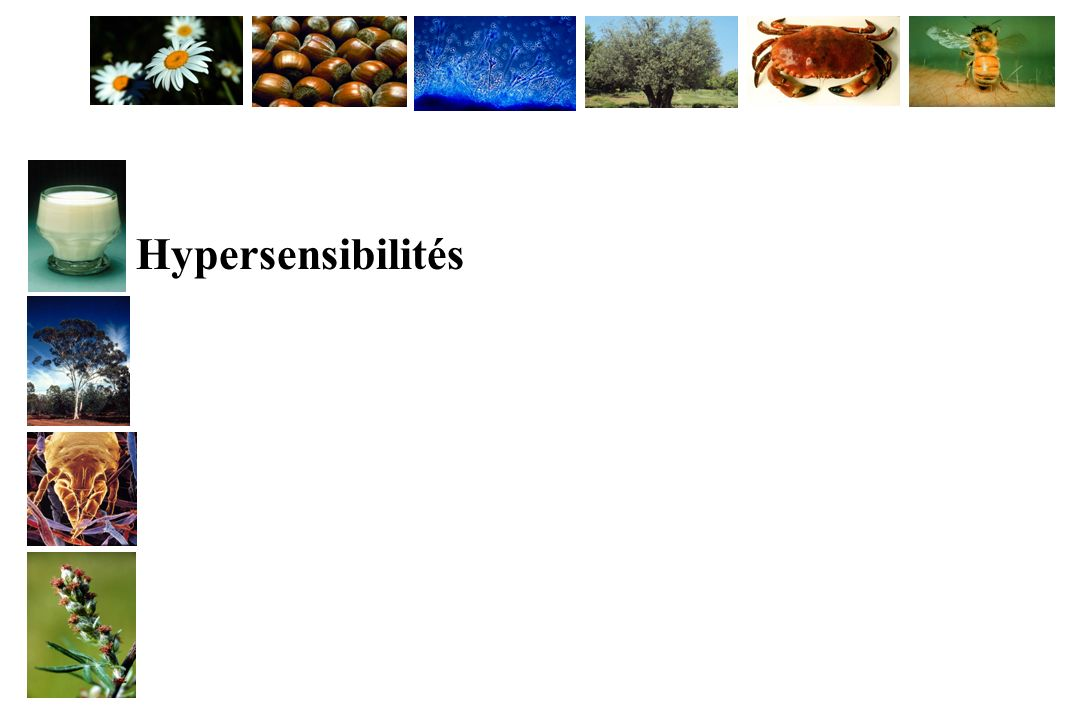 Hypersensibilités
