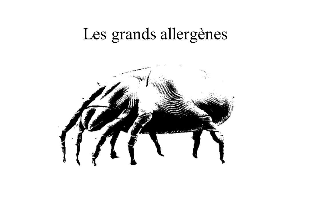 Les grands allergènes
