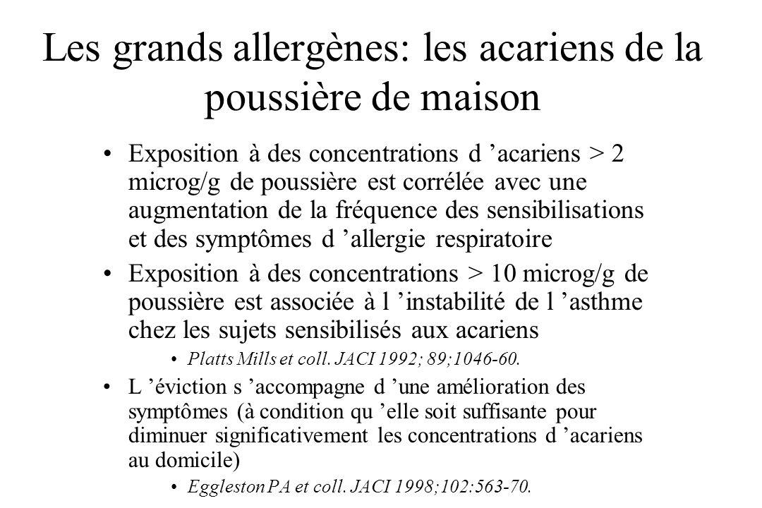 Les grands allergènes: les acariens de la poussière de maison