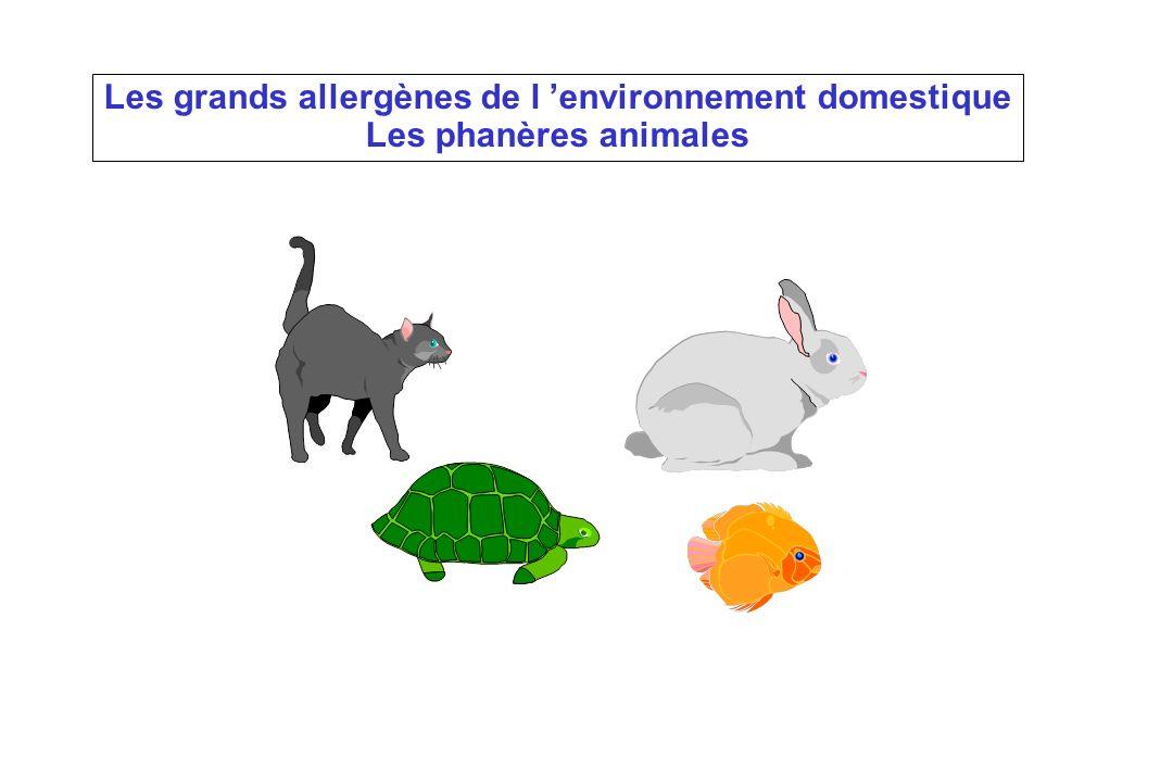 Les grands allergènes de l 'environnement domestique