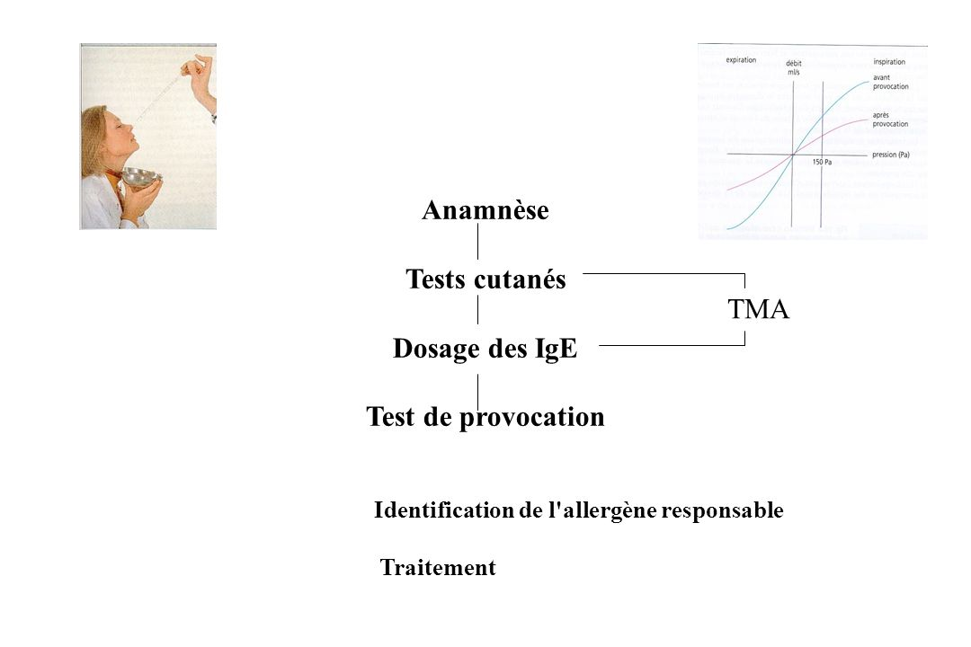 Anamnèse Tests cutanés Dosage des IgE Test de provocation