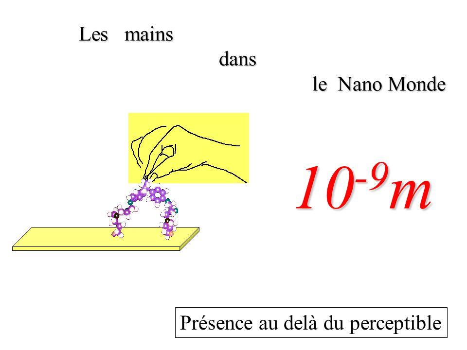 Les mains dans le Nano Monde 10-9m Présence au delà du perceptible