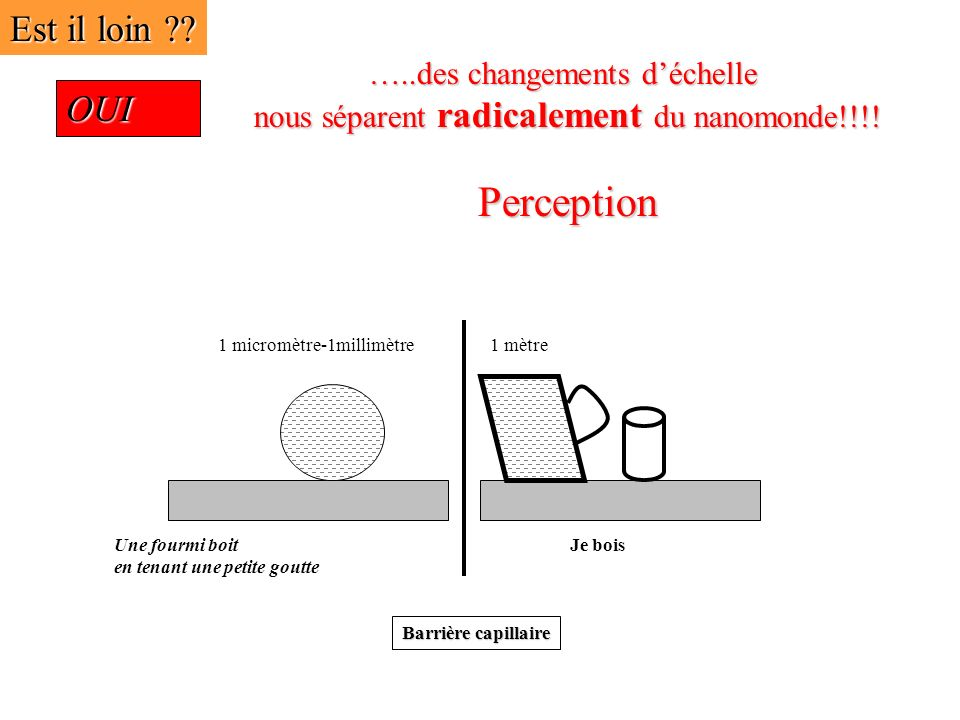 Perception Est il loin OUI …..des changements d'échelle