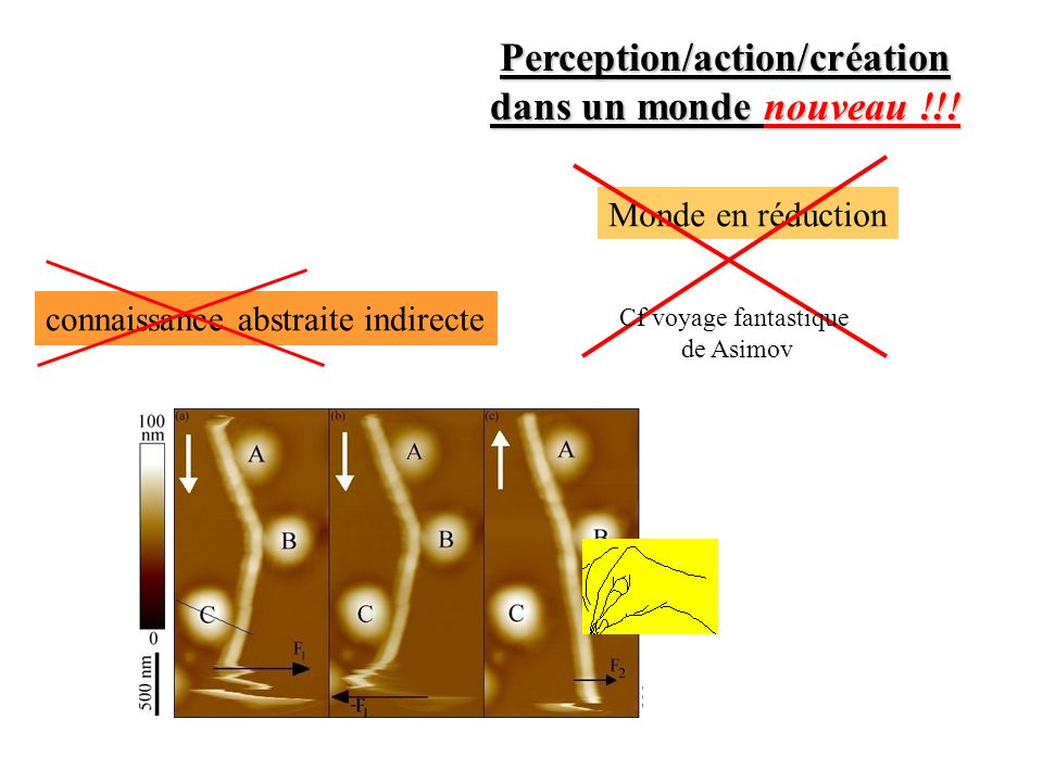 Perception/action/création