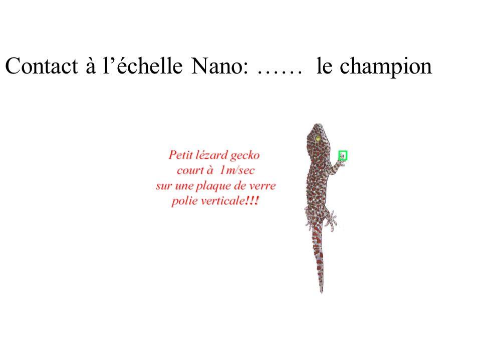 Contact à l'échelle Nano: …… le champion