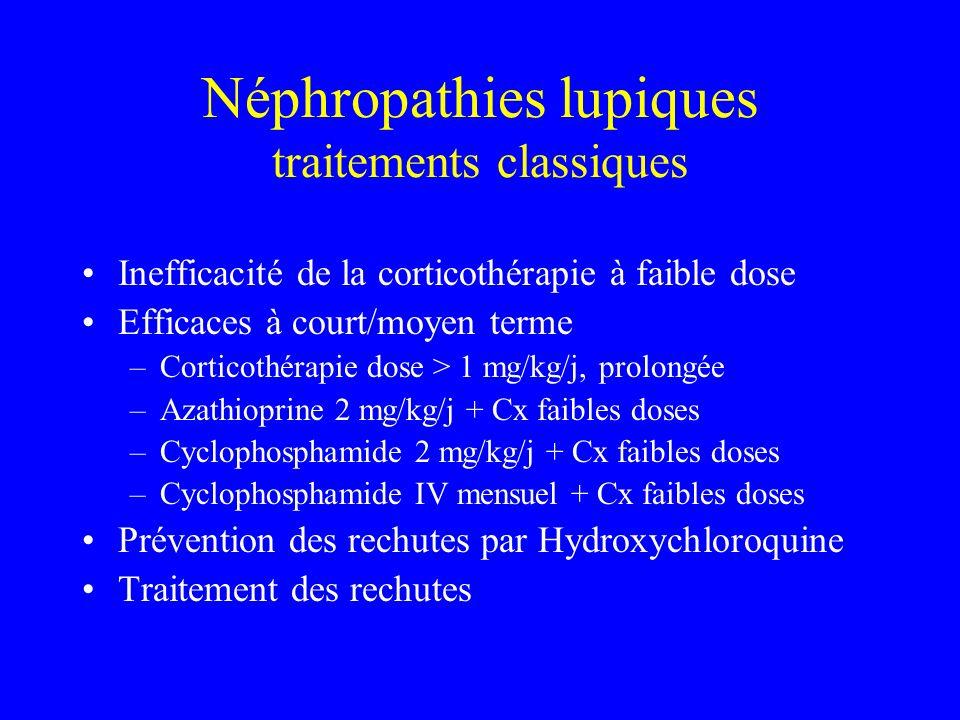 Néphropathies lupiques traitements classiques