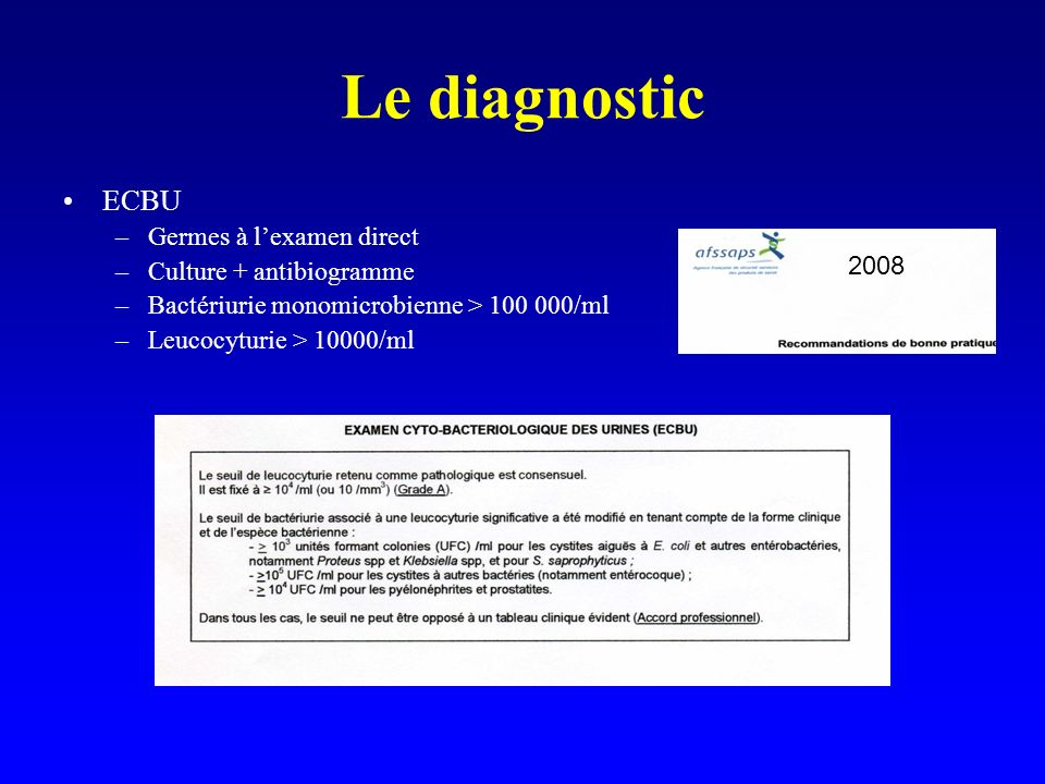 Le diagnostic ECBU Germes à l'examen direct Culture + antibiogramme