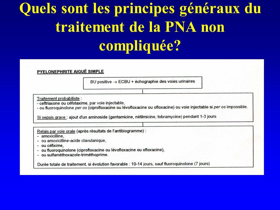 Quels sont les principes généraux du traitement de la PNA non compliquée