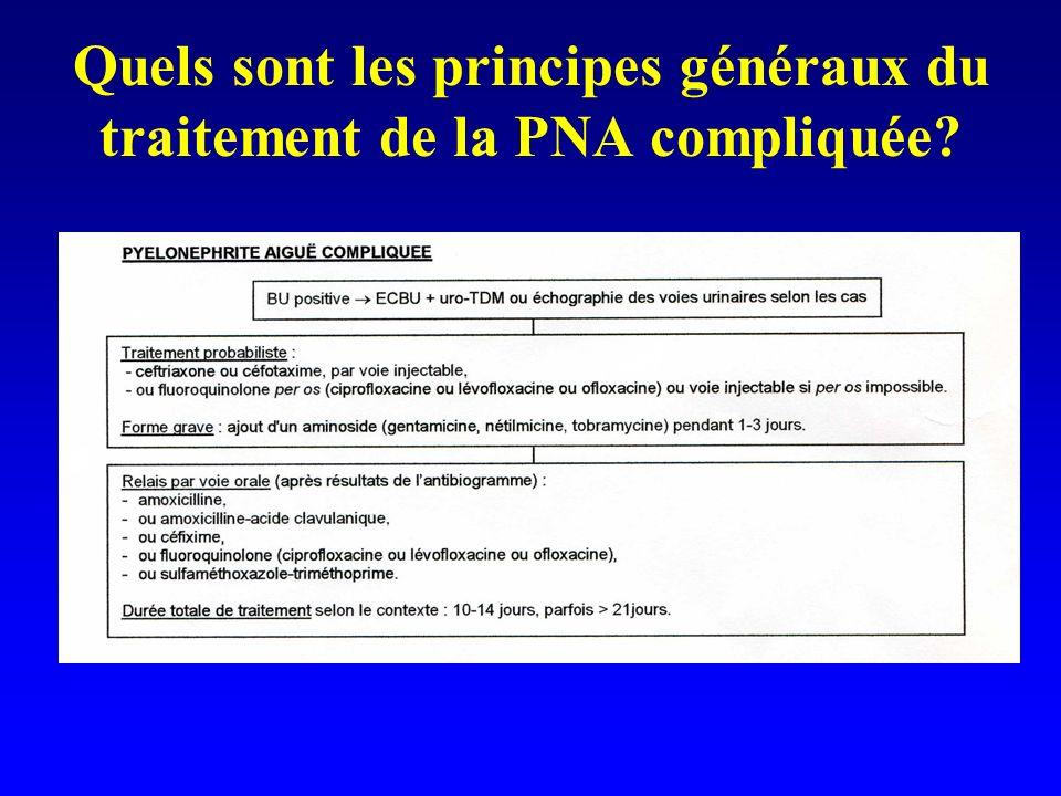 Quels sont les principes généraux du traitement de la PNA compliquée