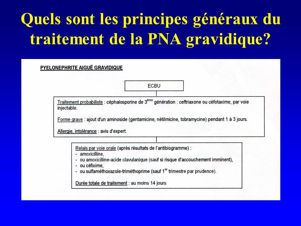 Quels sont les principes généraux du traitement de la PNA gravidique