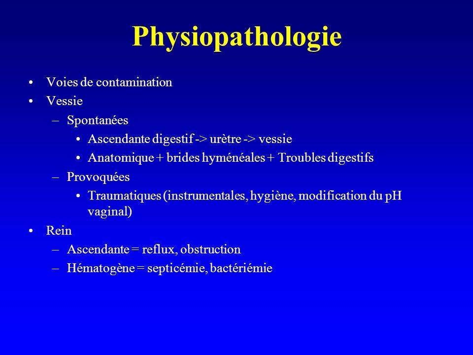 Physiopathologie Voies de contamination Vessie Spontanées