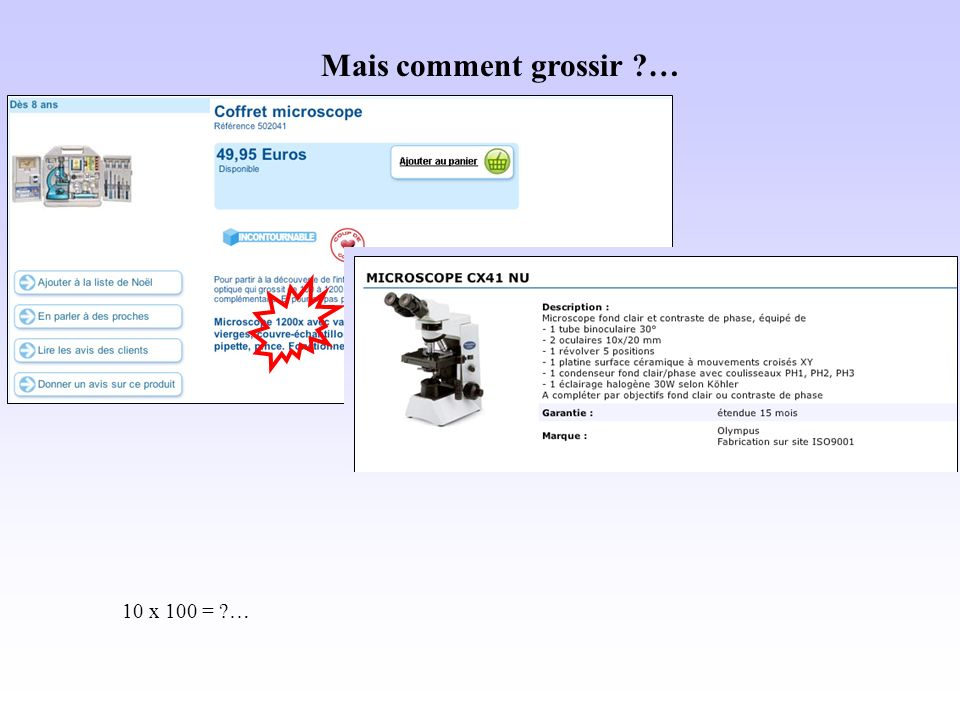 Mais comment grossir … 10 x 100 = …