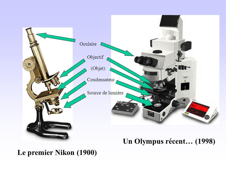 Un Olympus récent… (1998) Le premier Nikon (1900) Oculaire Objectif