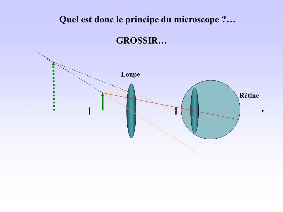 Quel est donc le principe du microscope …