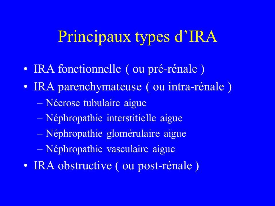 Principaux types d'IRA