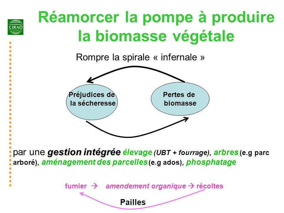 Réamorcer la pompe à produire la biomasse végétale