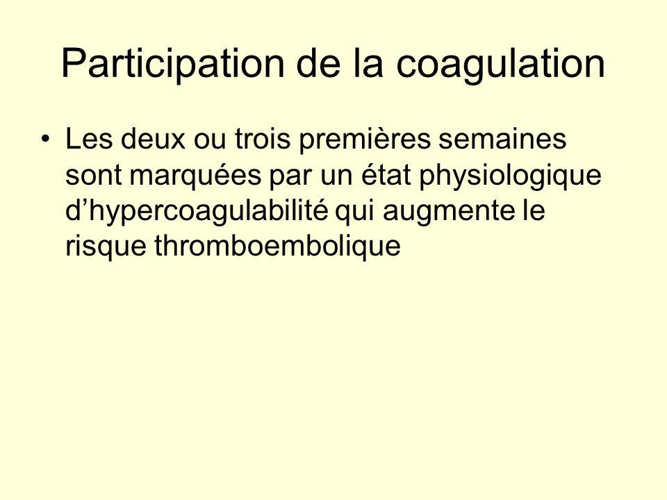 Participation de la coagulation