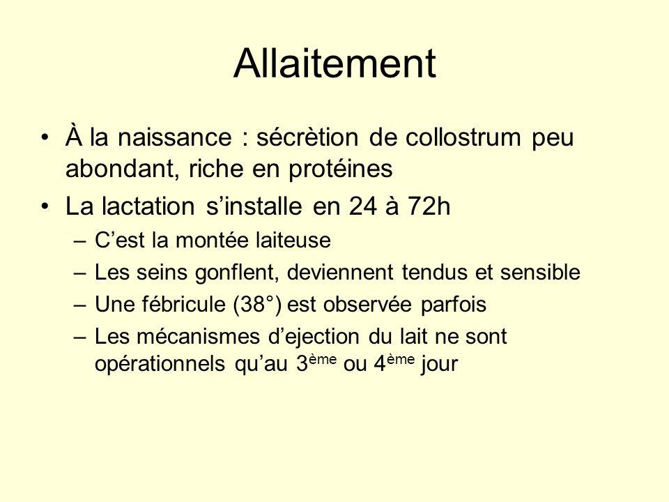 Allaitement À la naissance : sécrètion de collostrum peu abondant, riche en protéines. La lactation s'installe en 24 à 72h.