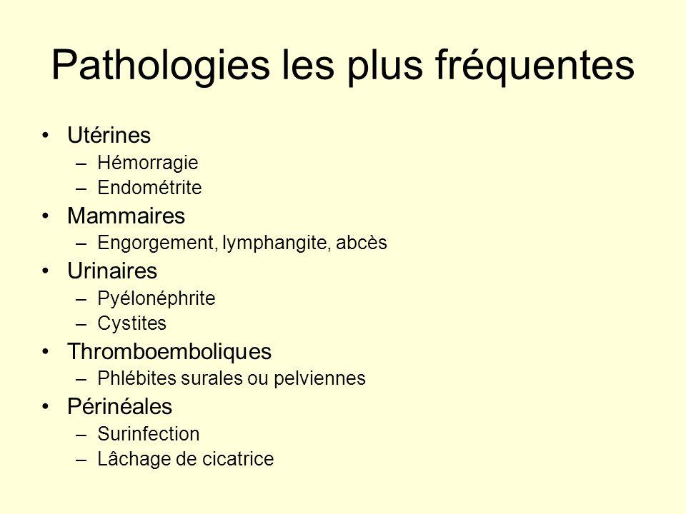 Pathologies les plus fréquentes