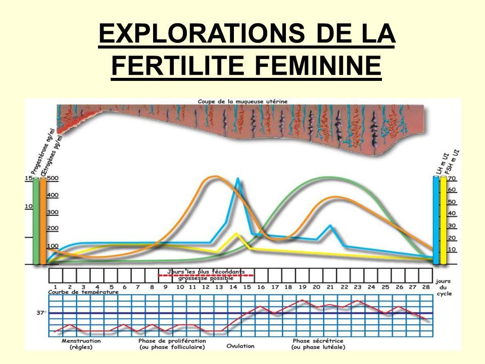 EXPLORATIONS DE LA FERTILITE FEMININE