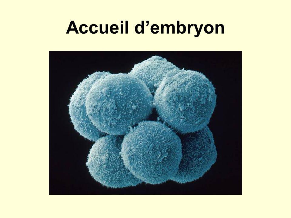 Accueil d'embryon
