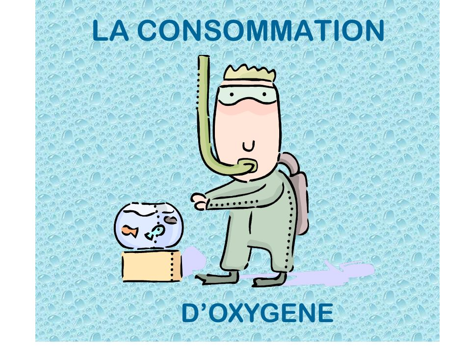 LA CONSOMMATION D'OXYGENE